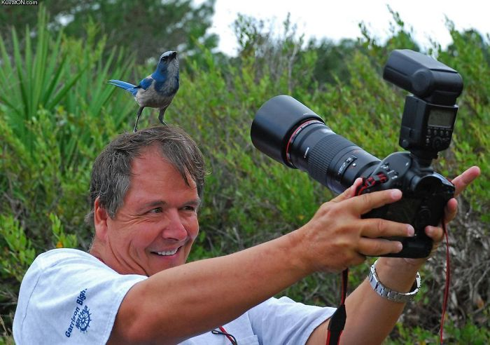 30+ Crazy Photographers Who Will Do ANYTHING For The Perfect Shot - Εικόνα53