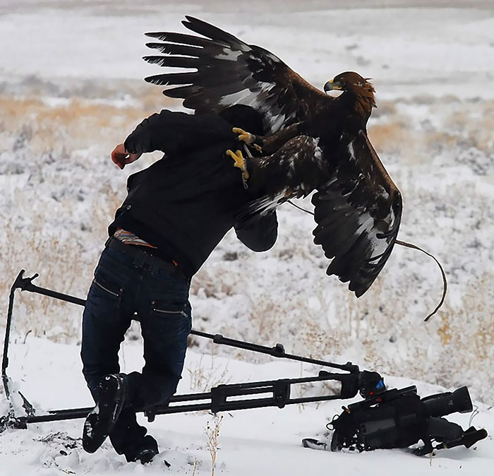 30+ Crazy Photographers Who Will Do ANYTHING For The Perfect Shot - Εικόνα60