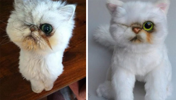 This Company Makes Exact Plush Toy Copies Of Your Pets - Εικόνα6