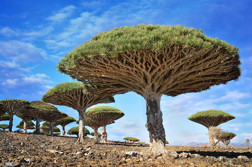 30+ Unbelievable Places That Look Like They're From Another Planet - Εικόνα78