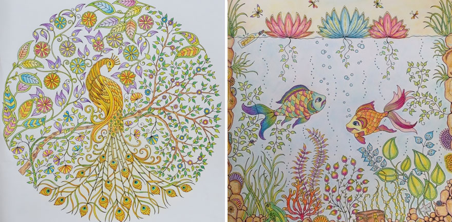Artist Creates Adult Coloring Books And Sells More Than A Million Copies - Εικόνα 12