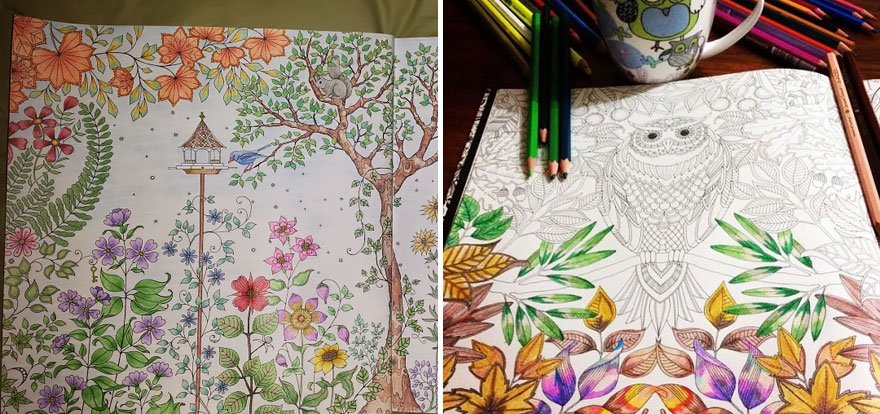 Artist Creates Adult Coloring Books And Sells More Than A Million Copies - Εικόνα 14