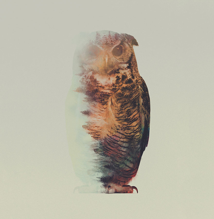 Double-Exposure Animal Portraits By Norwegian Photographer - Εικόνα 5